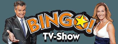 Bingo Spielanleitung Orf
